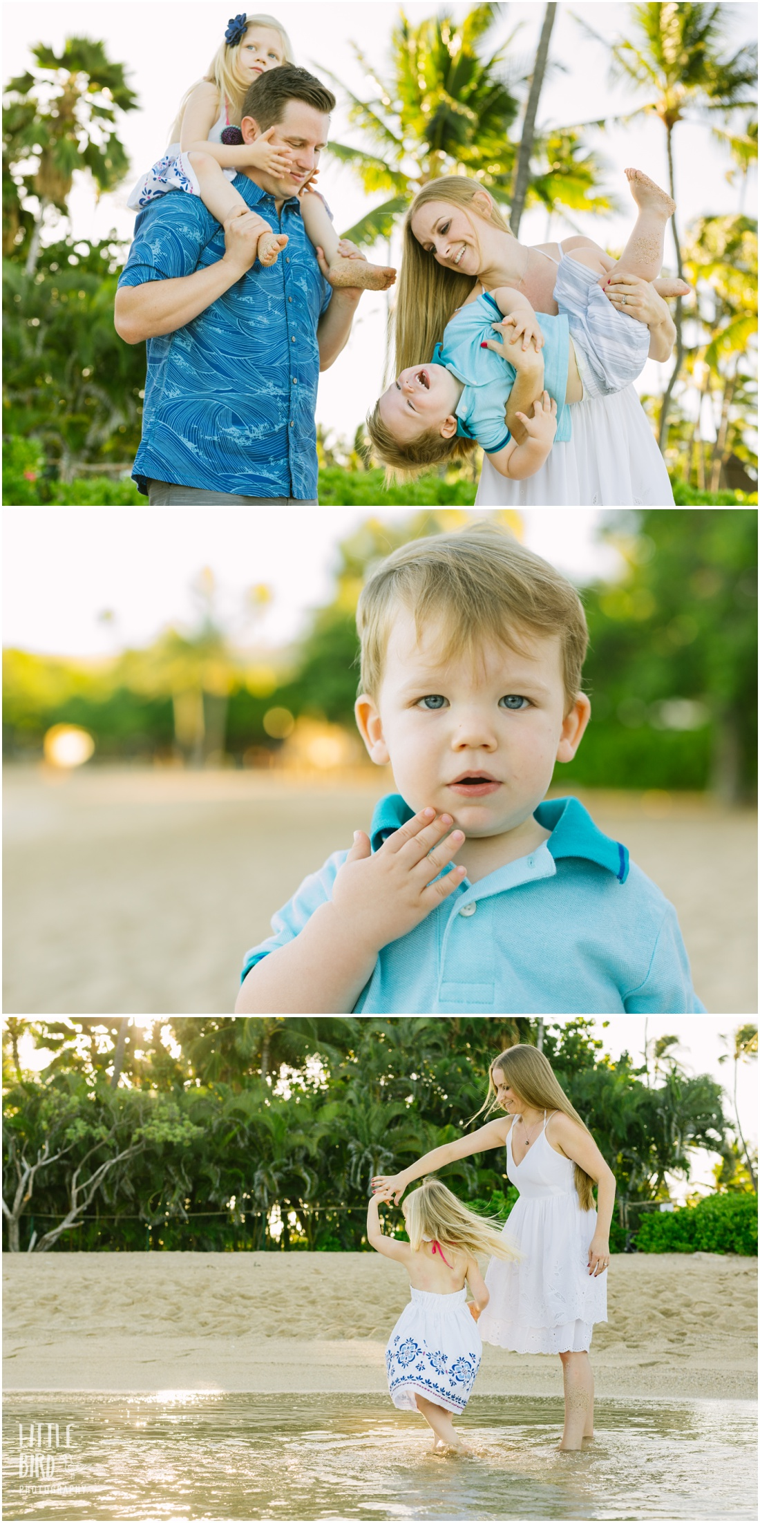 four seasons family photography session