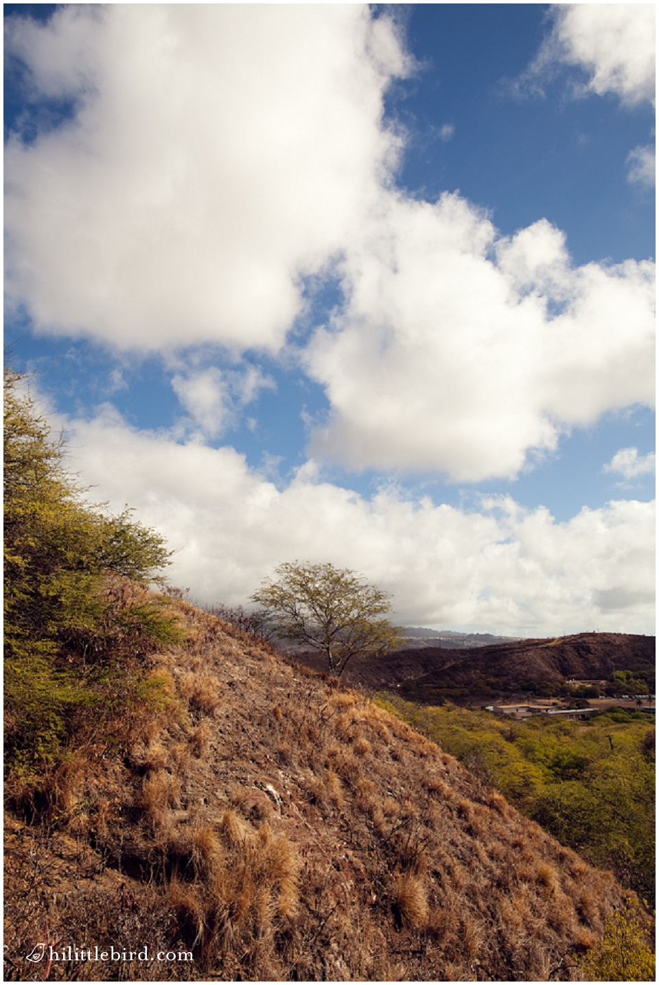 Diamond head family hikes oahu
