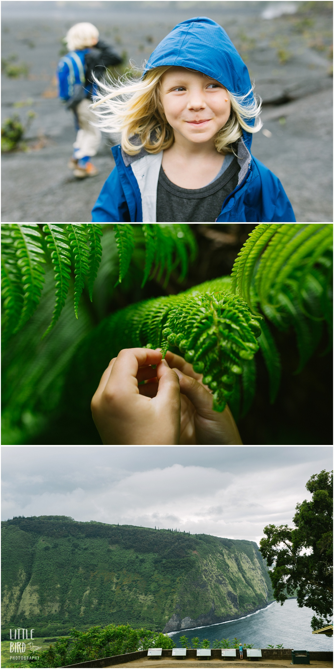 Hawaii family lifestyle photographer on Big Island adventure