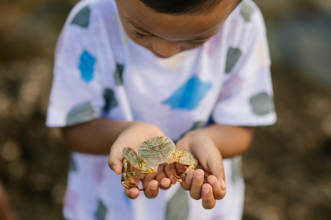 boy holding a crab during a photoshoot in hawaii