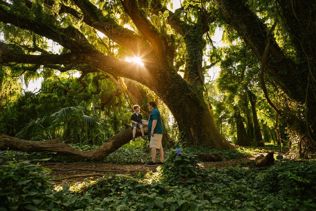 Maui family photographers capture dad and son in tropical rainforest portraits with golden light