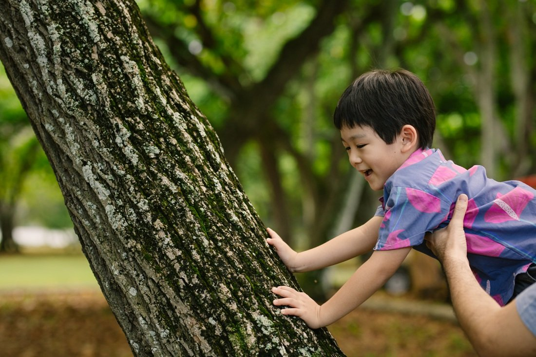 dad helps toddler son climb a tree during a fun family photoshoot in oahu