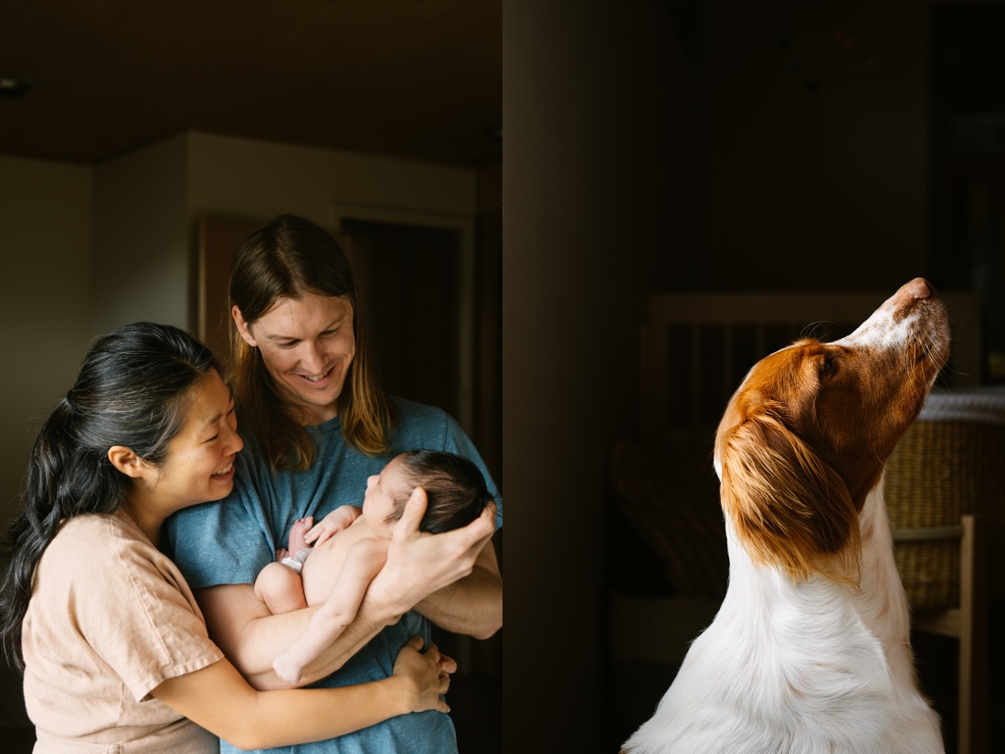 family of 3 plus fur baby home from the hospital in honolulu
