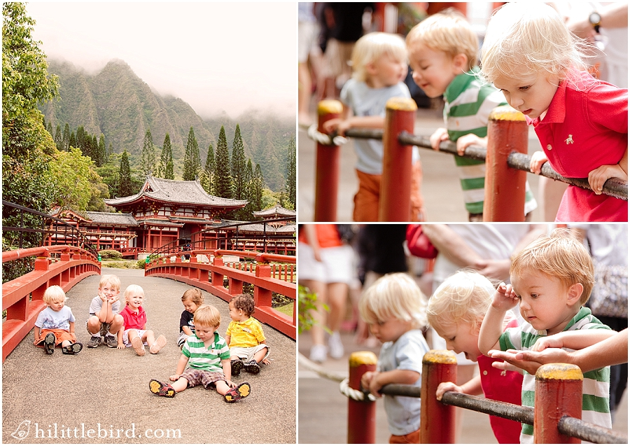 byodo-in oahu photographer families