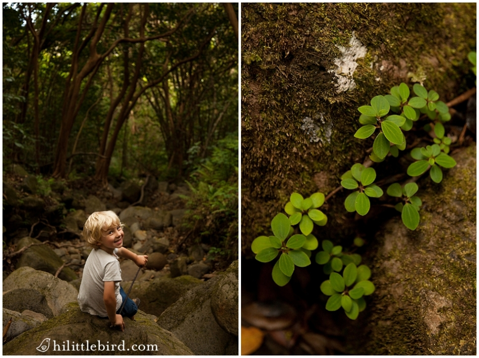 kids activities oahu hiking