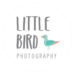 Fun Oahu Family Photography by Little Bird Photography logo